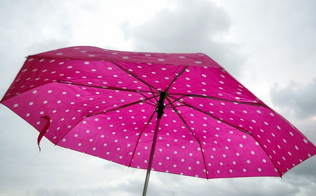 You carry a pink umbrella and you're not gay?